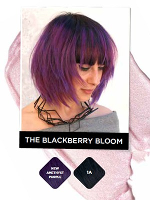 blackberry-bloom.jpg